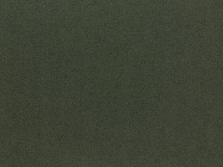 Colourmount 3030 Leaf Green (Liść) Karton dekoracyjny Passe-Partout